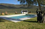 African Game Lodge - Outdoor Swimming Pool