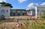 Dieu Donne Stellenbosch