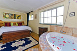 Blue Roan Country Lodge - Bluebush king bed and spa bath