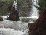 Waterwoods