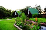 Tsitsikamma Lodge - Garden Cabins