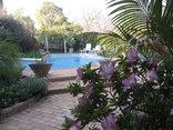 Tehillah - Swimming Pool Area