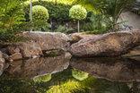 Excellent Guest House - trout pond