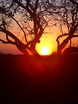 Emdoneni Lodge with Animal Care & Rehab Centre - Sunset at Emdoneni