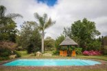 Coral Tree Cottages - Pool area