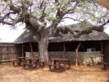 Kwamahla Conference Centre and Game Lodge - Boma