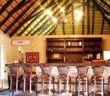 Shikwari Game Reserve - Warthog Bar - fully licienced