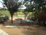 Sabie River Bush Lodge - Bush Boma Area