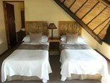 Lekoa Lodge - Twin Beds