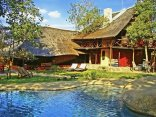 Pezulu Tree House Game Lodge - Rock Pool and Main Lodge Building