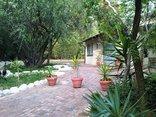 Pine Tree Lodge - Thornbush