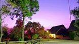 Pine Tree Lodge - Jacaranda at night
