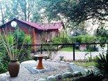 Pine Tree Lodge - Sagewood and Yellowood
