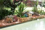 Midrand Wild Goose Guest House - Swimming pool area