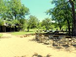 Shindzela Tented Camp - Boma and main area