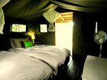 Shindzela Tented Camp - twin safari tent