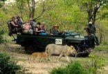 Shindzela Tented Camp - on safari with shindzela