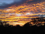 Andanté Game Farm - Bushveld sunset