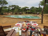 Ama Amanzi Bush Lodge - Breakfast at the pool
