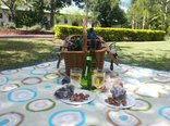 Tzaneen Country Lodge - Picnic Basket