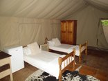 Buffalo Drift - Tented Camp - bedroom