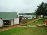 Memory Lane - Africa Silks Farm