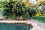 Birdsong Cottages - Owls Cottages shared swimming pool