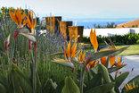 Aquamarine Guest House, Mossel Bay - Garden & ocean view