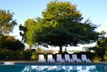 Pine Lodge Resort - George - Swimming pool set in lush gardens