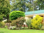 Pine Lodge Resort - George - Lush gardens