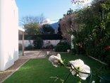Montarbre Cottage - Garden