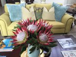 Hermanus Boutique Guesthouse