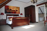 Sunninghill Guest Lodge - Penthouse bedroom