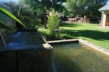 Aloes Guest House - Garden