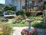 Parrot Peek Inn - Garden