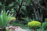 El Cazador Guest House - Garden