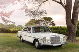 Amani Guest Lodge - The Old Lady - airport shuttles, weddings and matric farewells