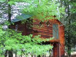Sycamore Avenue Treehouses - Pegasus Treehouse