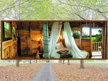 Sycamore Avenue Treehouses - Romantic 1