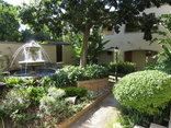 Dunton Guest House  - The garden