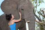 Kwa Madwala Private Game Reserve - Elephant Interactions