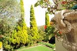 Villa Lugano Guesthouse - Gardens