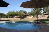Tshikwalo Lodge - Swimming Pool