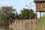 Re A Lora Lodge - Re a Lora Lodge Hide