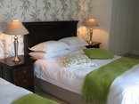 Avocet Guest House - Room 5