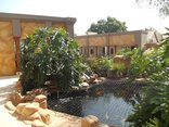 Homestay Travel Guest House and Conference Centre - Koi Pond