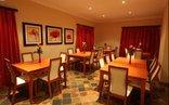 The Wild Olive Guest House - Pretoria