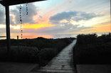 3 Dolphins - beautiful sunset