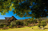 Game Lodges in the Limpopo