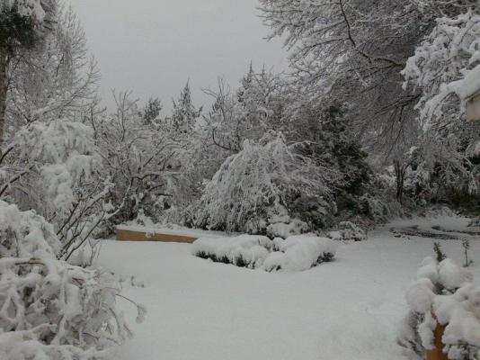 Snow in July 2